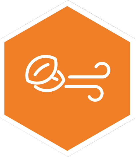 Immissione aria di rinnovo